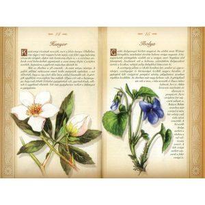 A magyarság virágai