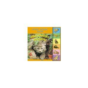 Olvasok, számolok, tanulok - Macskafélék kicsinyei