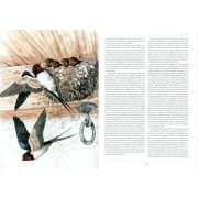 A magyarság madarai