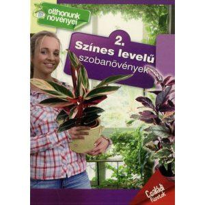Otthonunk növényei 2. - Színes levelű szobanövények