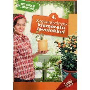 Otthonunk növényei 4. - Szobanövények kisméretű levelekkel