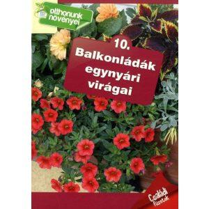 Otthonunk növényei 10. - Balkonládák egynyári virágai