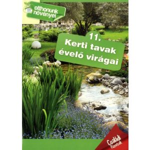 Otthonunk növényei 11. - Kerti tavak évelő virágai