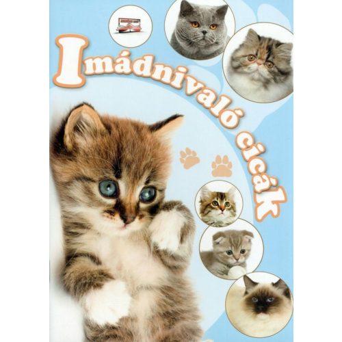 Imádnivaló cicák