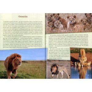 Emlősállatok a világ körül - ENYHÉN SZÁLLÍTÁSI SÉRÜLT, UTOLSÓ DARABOK