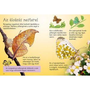 Kis könyvtár - Pillangók