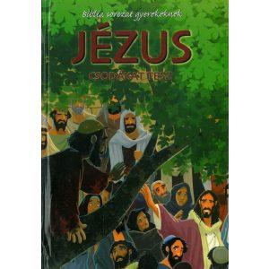 Jézus csodákat tesz -   - BIBLIA SOROZAT GYEREKEK