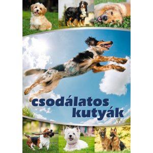 Csodálatos kutyák