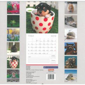 2019 naptár: Cuki állatok