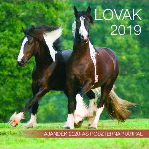 2019 naptár: Lovak