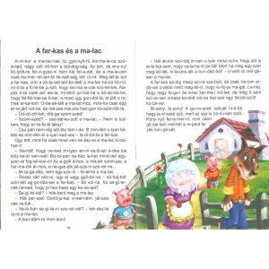 A csa-csi sza-már és más történetek - Szótagolós mesék
