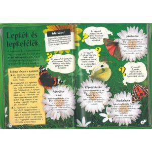 Séta a természetben-Figyeld meg a rovarokat,a madarakat,az emlősöket és a növényeket.