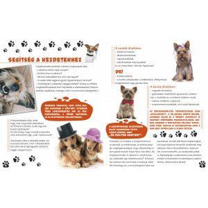 Kisokos a kutyusokhoz-  kis gazdik kézikönyve