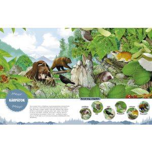 Csodálatos állatok erdők, mezők,és tanyák élővilága